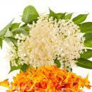 Soc și petale de flori
